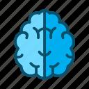 brain, head, medical, mind icon