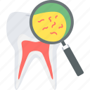 bacteria, dental, dentistry, germs, molar, teeth, tooth icon