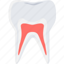 cavity, dentist, dentistry, medical, teeth, tooth