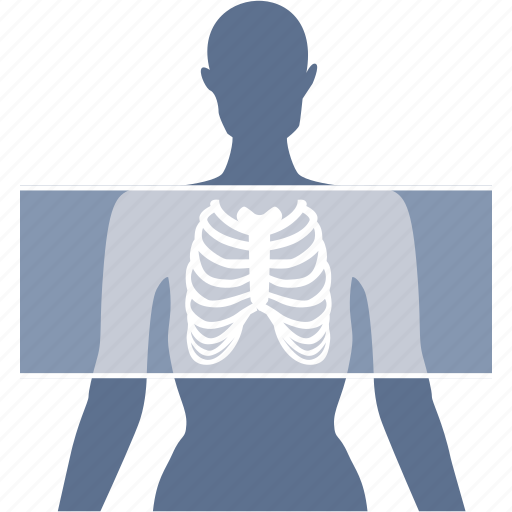 bones, diagnostic, medical, radiography, radiology, skeleton, xray icon