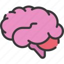 brain, health care, hospital, medical, smart