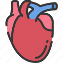 health care, heart, hospital, medical, organs icon