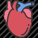 health care, heart, hospital, medical, organs