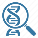 dna, genome, research, science