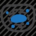 cell, cytoplasm, human, nucleus icon