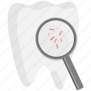 dental, dentist, dentistry, medical, search, teeth, tooth icon