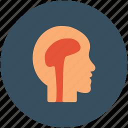 brain, head, human brain, mind icon