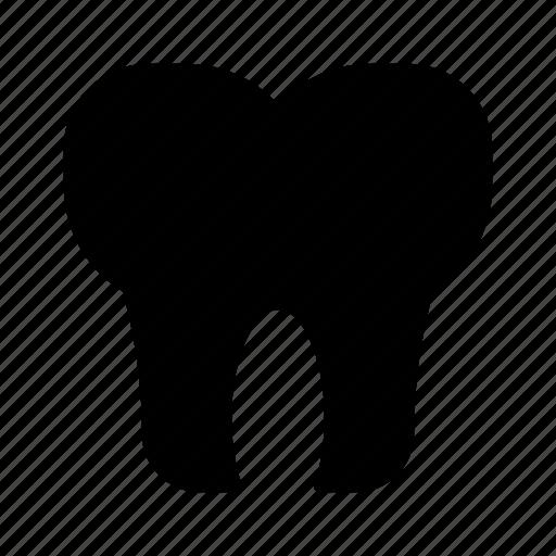 dental, dentist, stomatology, teeth, tooth icon