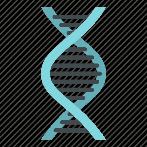 biology, dna, genetic, medical, medicine, molecule, science icon
