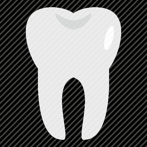 care, dental, dentist, healthy, hygiene, medicine, tooth icon