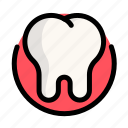 health, medical, medicine, tooth icon