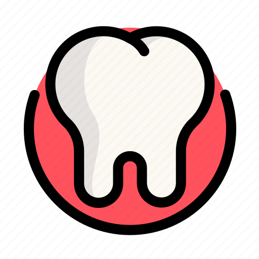 health, medical, medicine, tooth icon