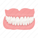 human, jaw, person, prosthesis, teeth icon