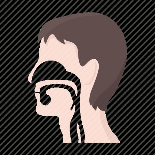esophagus, head, incision, internal, man, throat icon