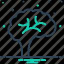 brain, brainstorm, creativity, genius, human, idea, memory