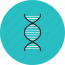 code, dna, gene, genome, helix, organism, research, science, spiral, string icon