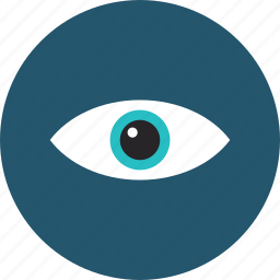 eye, eyeball, human, look, looking, privacy, search, sight, vision icon
