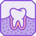 dental, medical, medicine, pharmacy, roentgen, rontgen, teeth icon
