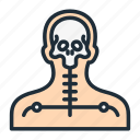 body, head, radioactive, skeleton, skull, survey, x-ray icon