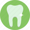 flourid, health, medicine, teeth, tooth icon