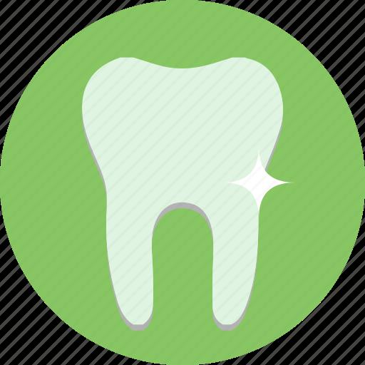 flourid, health, medicine, teeth, tooth icon