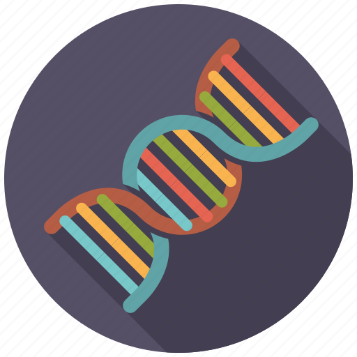 dna, healthcare, medical, microbiology, strand icon