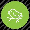 bird, branch, christmas, love, sing, tree, tweet