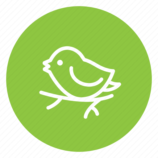 bird, branch, christmas, love, sing, tree, tweet icon