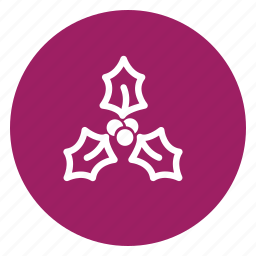 christmas, flowers, gift, mint icon