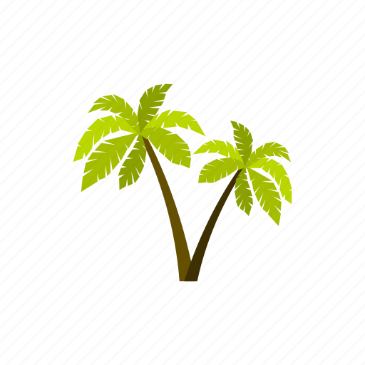beach, miami, palm, summer, travel, tropical, vacation icon