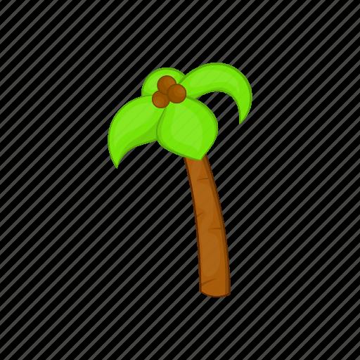 beach, cartoon, coconuts, palm, sign, summer, tree icon