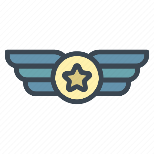 badge, medal, military icon