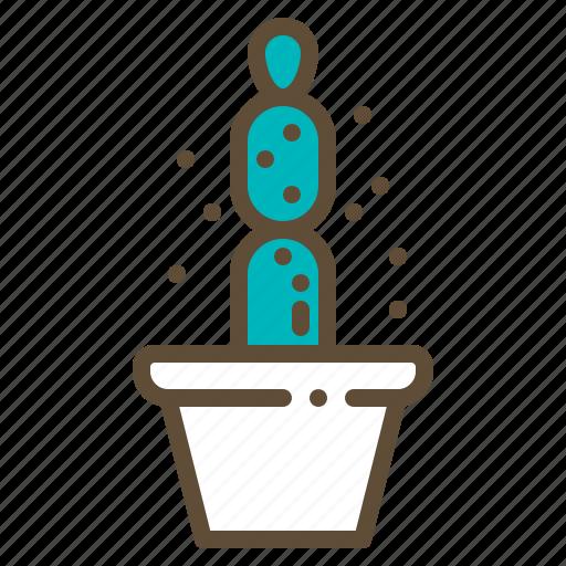 Cactus, plant, pot, succulent icon - Download on Iconfinder