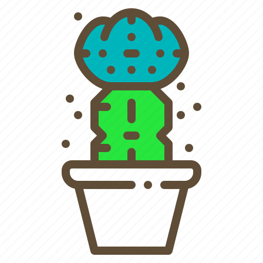 Cactus, grafting, plant, pot, succulent icon - Download on Iconfinder