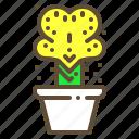 cactus, plant, pot, succulent