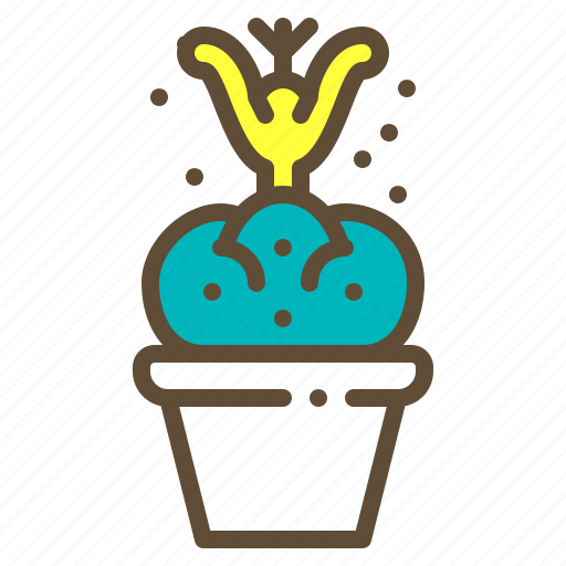 cactus, plant, pot, succulent icon