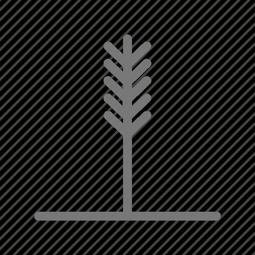 grass, leaves, plant, stalk, wheat icon