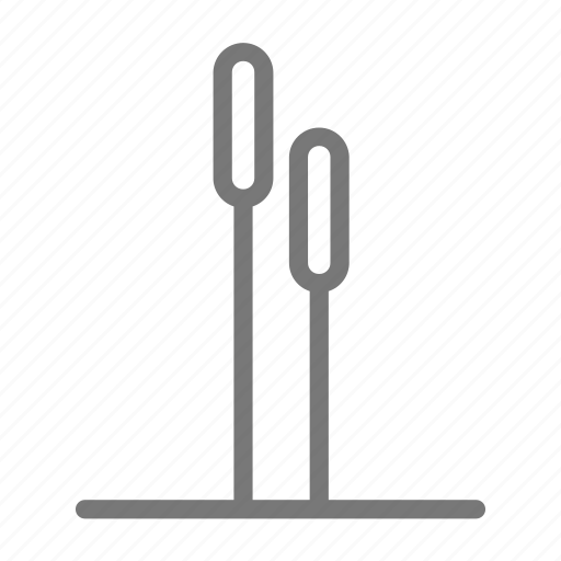 blade, grass, nature, pussywillow icon