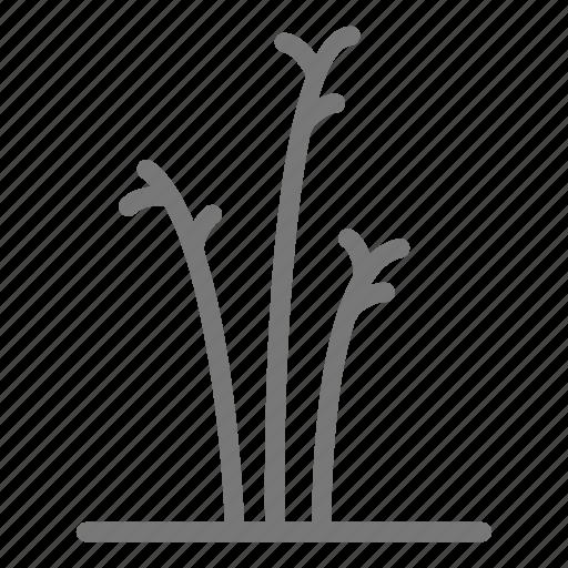 blade, eco, grass, lawn, plant icon