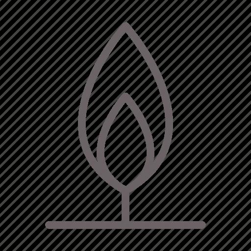 branch, eco, forrest, garden, leaf, pine, tree icon