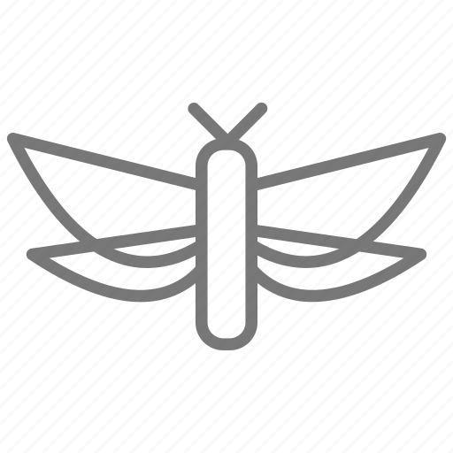 bug, butterfly, fly, insect, moth, wings icon