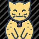 animal, cat, cute, domestic, kitten, sitting