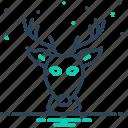 deer, head, antelope, animal, antler, reindeer, forest
