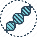 replication, reproduction, dna, helix, forensic, biotechnology, genetic