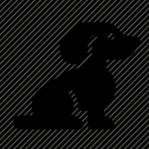 beagle, dog, puppy icon