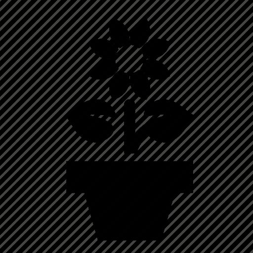 flower, plant, pot icon