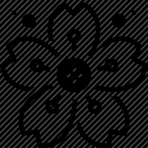 blossom, cherry, cherryblossom, etching, flower icon
