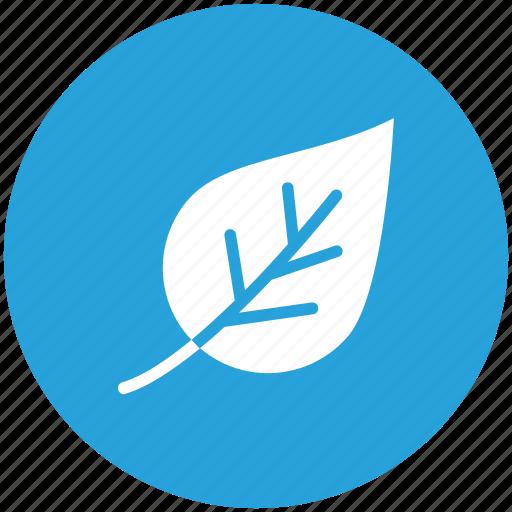 green, leaf, life, plant icon icon