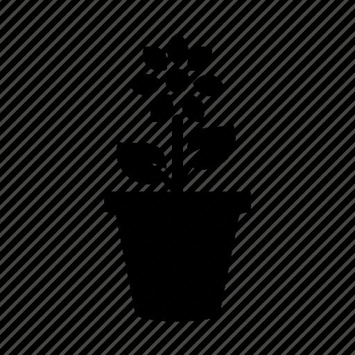 flower, flower pot, garden, pot icon