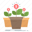 growth, money, plant, pot, tree